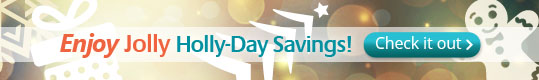 Holyiday Sale 2014
