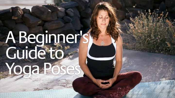 A Beginner's Guide to Yoga Poses